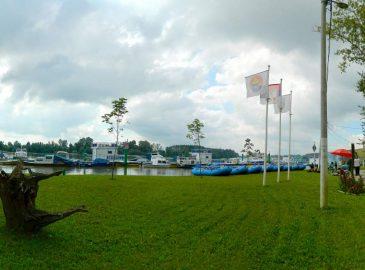 New Panorama1_1