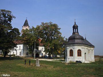 fenek-1